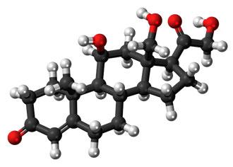 Corticosteroids 3D